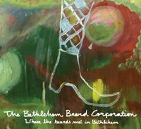 the bethlehem beard corporation cover