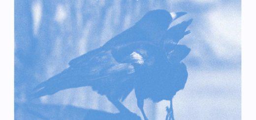 Henrik von Euler - Migrationer EP cover
